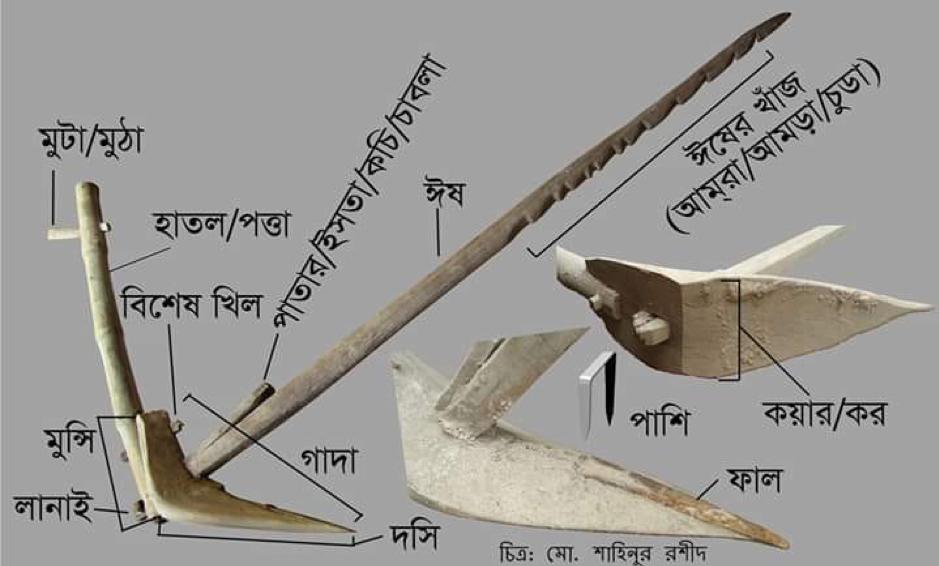 বাংলার প্রত্ন-প্রযুক্তির ইতিহাস: প্রসঙ্গ লাঙল